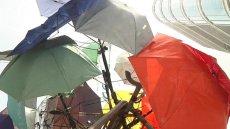 umbrella tree sculpture